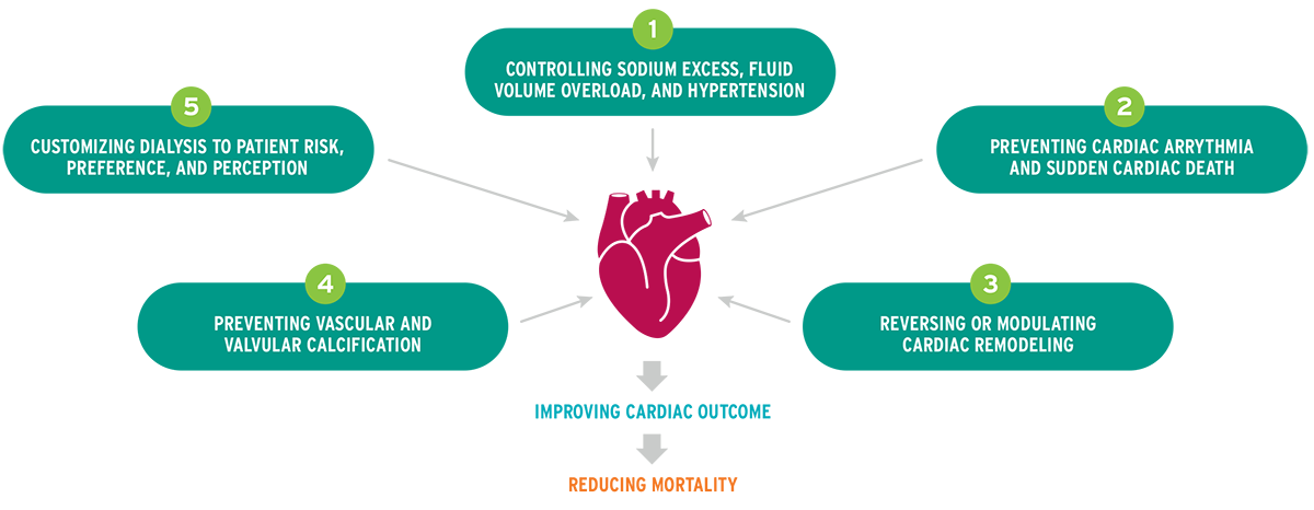Five essential actions to reduce cardiac mortality in CKD5 dialysis patients